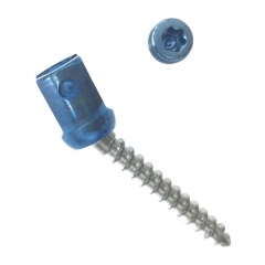 Spinal RS8-5.5 rod Polyaxial Pedicle Screw